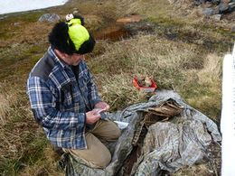 Steve investigates the spectacled porpoise skeleton