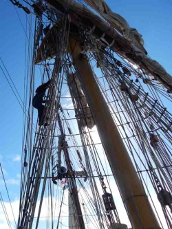 Curator Deirdre up the main mast
